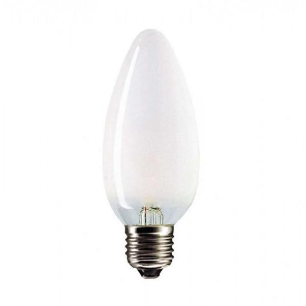 Лампа накаливания ДСМТ 230-60Вт E27 (100) Favor 8109020