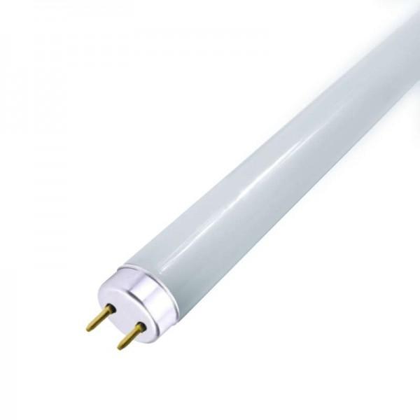 Лампа светодиодная Elementary T8 Glass 600мм G13 10Вт 4000К Gauss 93020